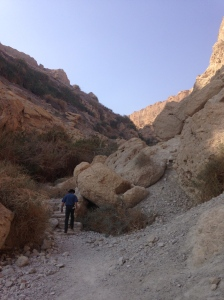 At Ein Gedi - that's our intrepid Israeli guide, Ami leading the way.