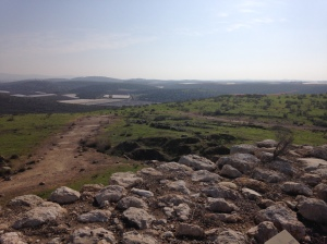 Back where it's green - Tel Lachish